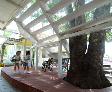 光明台幼稚園